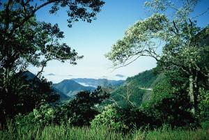 Parc national de Bocaina